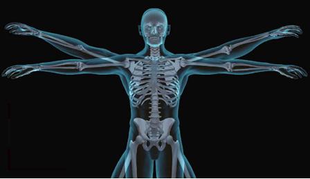XXVII Congreso de la Sociedad Chilena de Osteología y Metabolismo Mineral